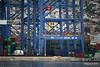 Hidden MSC SAMANTHA Piraeus Container Terminal PDM 29-10-2016 11-20-15