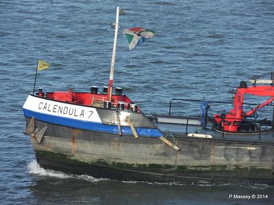 CALENDULA 7 Nieuwe Waterweg Rotterdam PDM 14-12-2014 11-36-055