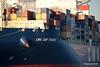 CMA CGM THAMES Southampton PDM 29-11-2016 18-09-43