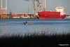 Fishing Dinghy MARNEDIJK Southampton PDM 26-08-2016 19-29-53