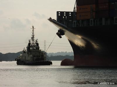 SVITZER SURREY HOUSTON EXPRESS Southampton PDM 19-07-2014 19-28-36