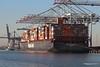 NEW YORK EXPRESS HANNI Southampton PDM 19-01-2017 14-20-17
