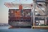 NEW YORK EXPRESS Southampton PDM 19-01-2017 14-08-43