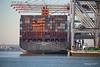 NEW YORK EXPRESS Southampton PDM 19-01-2017 14-08-45