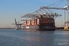 NEW YORK EXPRESS HANNI Southampton PDM 19-01-2017 14-22-03