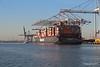 NEW YORK EXPRESS HANNI Southampton PDM 19-01-2017 14-22-02