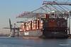 NEW YORK EXPRESS HANNI Southampton PDM 19-01-2017 14-20-16