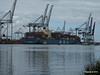 MOL CONTINUITY Southampton PDM 16-07-2014 15-38-59