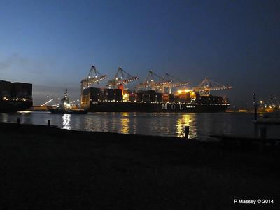 MOL QUINTET Southampton Night PDM 31-10-2014 17-22-32
