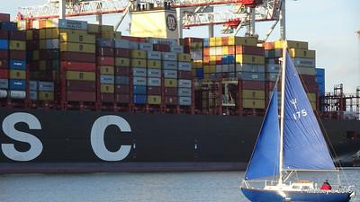 MSC CLARA Southampton PDM 29-12-2015 14-42-12