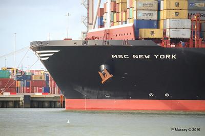 MSC NEW YORK Southampton PDM 02-02-2016 13-29-34