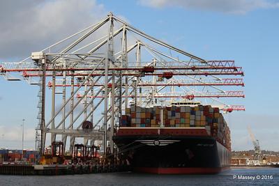 MSC NEW YORK Southampton PDM 02-02-2016 13-38-39