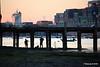 Fishing under Jetty Marchwood CMA CGM JULES VERNE MSC ALGHERO Southampton PDM 30-08-2016 19-51-45