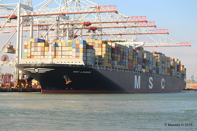 Other MSC Container Vessels Various Dates