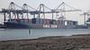 CMA CGM NEW JERSEY Southampton PDM 22-02-2018 11-06-05