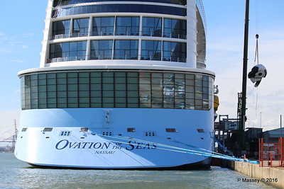 OVATION OF THE SEAS Raising Panda Southampton PDM 12-04-2016 15-16-05