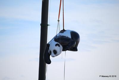 OVATION OF THE SEAS Raising Panda Southampton PDM 12-04-2016 15-21-29