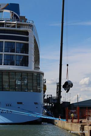 OVATION OF THE SEAS Raising Panda Southampton PDM 12-04-2016 15-14-34
