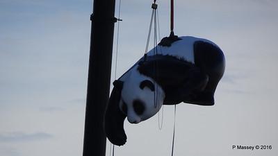 OVATION OF THE SEAS Raising Panda Southampton PDM 12-04-2016 15-18-00