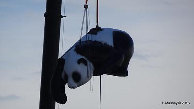 OVATION OF THE SEAS Raising Panda Southampton PDM 12-04-2016 15-18-03