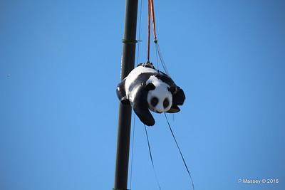 OVATION OF THE SEAS Raising Panda Southampton PDM 12-04-2016 15-22-38