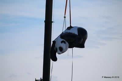 OVATION OF THE SEAS Raising Panda Southampton PDM 12-04-2016 15-21-37