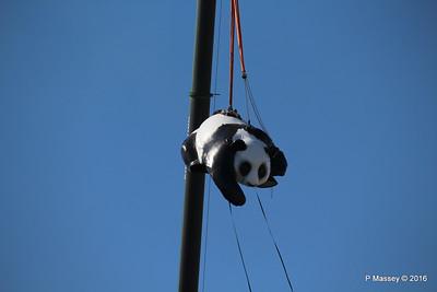 OVATION OF THE SEAS Raising Panda Southampton PDM 12-04-2016 15-22-39