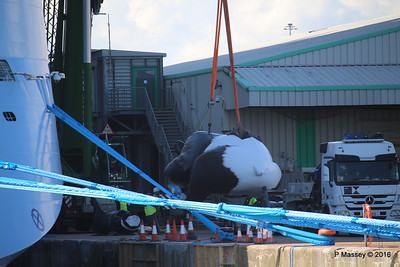 OVATION OF THE SEAS Raising Panda Southampton PDM 12-04-2016 15-04-17