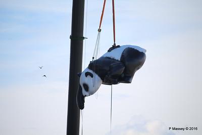 OVATION OF THE SEAS Raising Panda Southampton PDM 12-04-2016 15-16-57