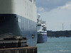 MORNING CALYPSO EXPLORER Southampton PDM 22-08-2014 13-40-045