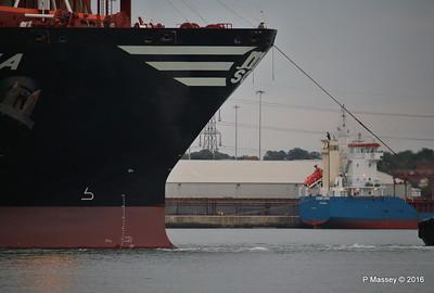 MSC DIANA Departing AMBER SPIRIT Southampton PDM 10-08-2016 19-45-39