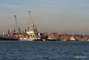 ss SHIELDHALL COMMON CALYPSO behind 3 Tugs Southampton PDM 19-01-2017 14-51-01