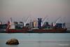 ERASMUSGRACHT Loading Yachts Southampton PDM 14-09-2016 19-16-36
