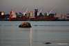 ERASMUSGRACHT Loading Yachts Southampton PDM 14-09-2016 19-12-32