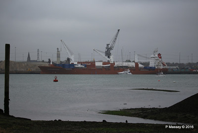 SCHELDEGRACHT Loading Yachts Southampton PDM 02-05-2016 12-28-039