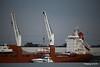 STADIONGRACHT Loading Yachts Southampton PDM 07-10-2016 17-38-57