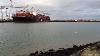 Swans AL DAHNA ss SHIELDHALL AMY C Southampton PDM 16-12-2017 14-59-55