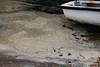 Dirty Foamy Water Cracknore Hard Marchwood 20-10-2016 16-04-13