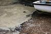 Dirty Foamy Water Cracknore Hard Marchwood 20-10-2016 16-04-12