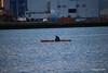 Kayaker Catching Fuash Southampton Water PDM 27-04-2016 19-22-18