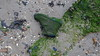 Lost Boot Marchwood 20-12-2017 15-23-12