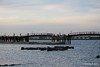Marchwood jetty PDM 05-05-2016 19-42-51