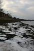 Sea Ice Marchwood 21-01-2017 14-36-048