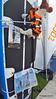 Dog Lifejacket Paddleboard Southampton Boat Show PDM 23-09-2017 16-55-28