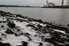 Sea Ice Shoreline Marchwood 21-01-2017 14-37-46