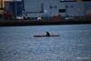 Kayaker Catching Fuash Southampton Water PDM 27-04-2016 19-22-16