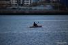 Kayaker Southampton Water PDM 27-04-2016 19-20-049