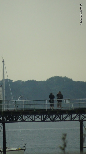 Hythe Pier Ship Watchers 23-06-2016 18-58-18