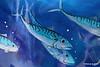 2 Glitter Fish - The Brooks Shopping Centre - Ocean Village 16-08-2016 14-39-25