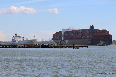 APL CHANGI Passing GREEN GUATEMALA over Royal Pier Southampton PDM 12-04-2016 15-37-26